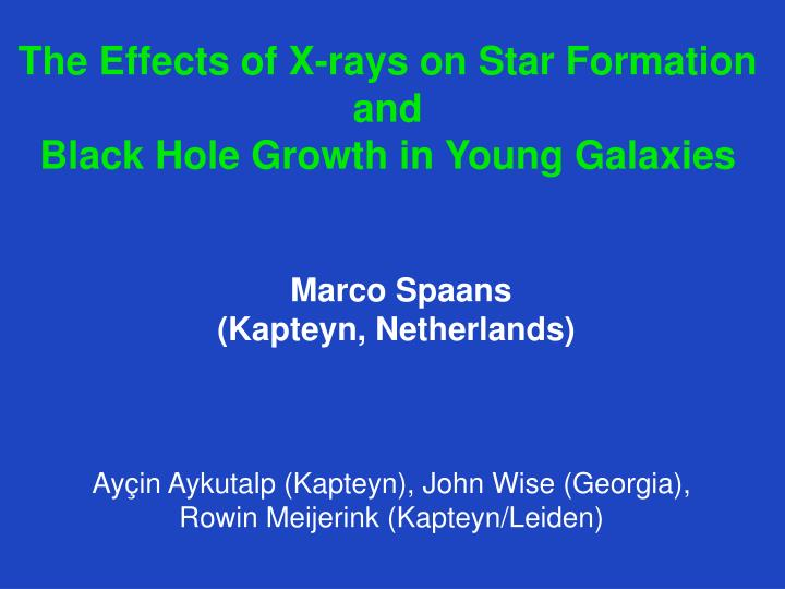 The effects of x rays on star formation and black hole growth in young galaxies
