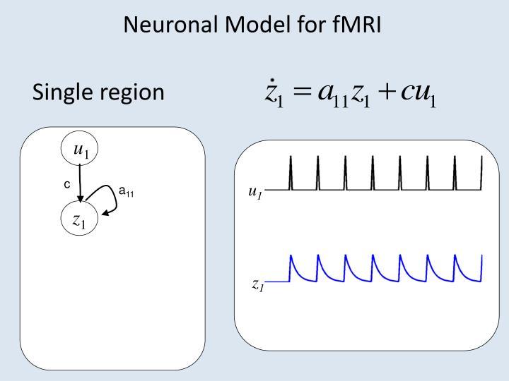 Neuronal Model for fMRI