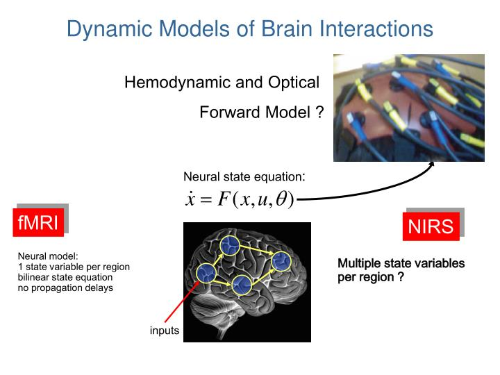 Dynamic Models of Brain Interactions