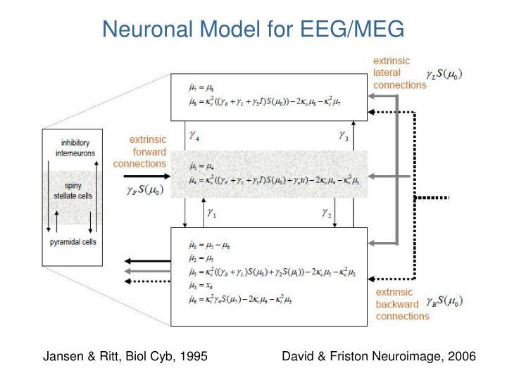 Neuronal Model for EEG/MEG