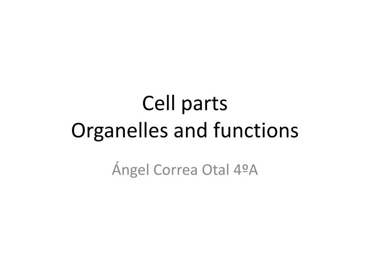 cell parts organelles and functions n.
