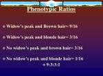 phenotypic ratios