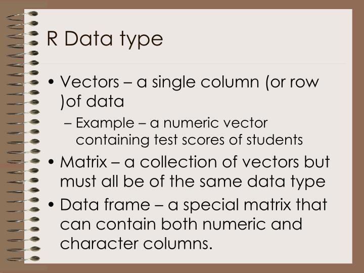 R data type