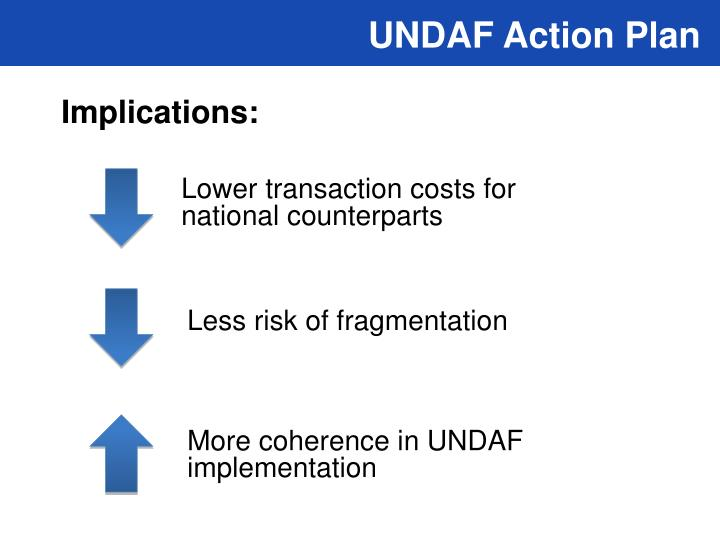 UNDAF Action Plan