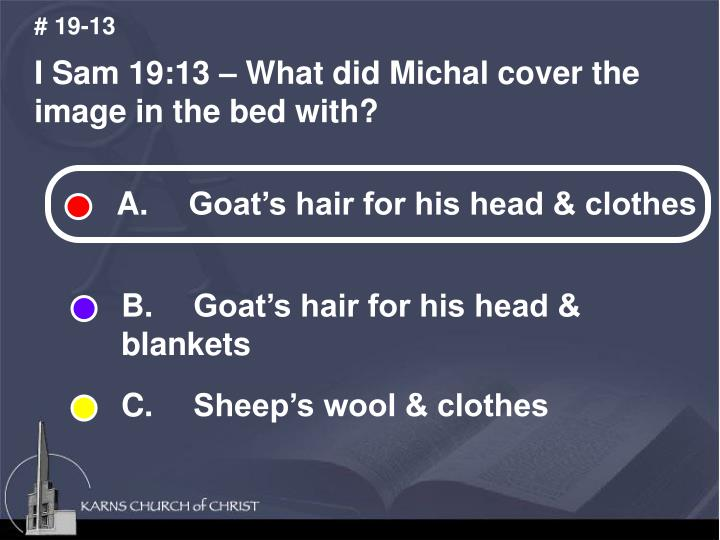 A.  Goat's hair for his head & clothes