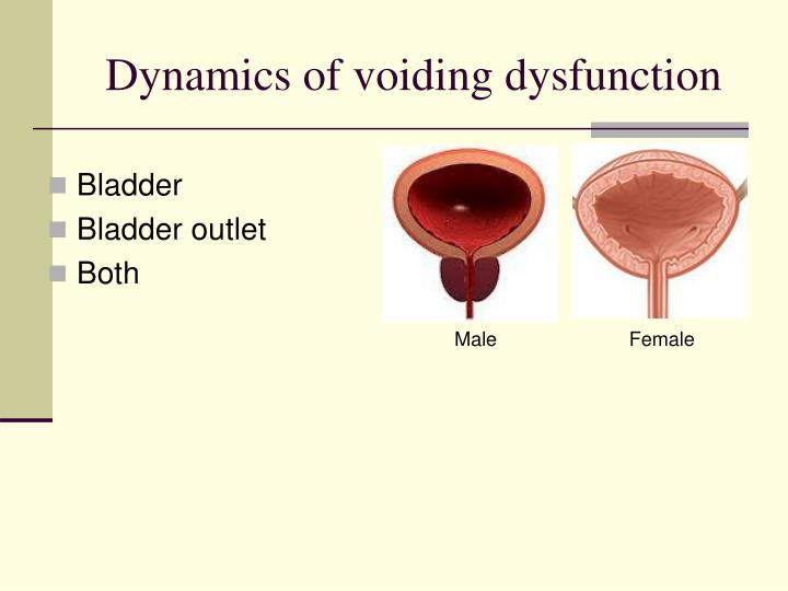 Dynamics of voiding dysfunction