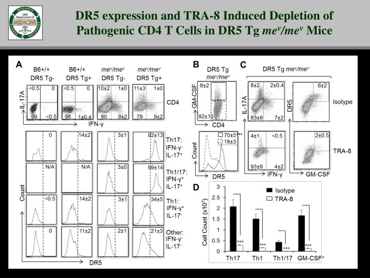 DR5 expression and TRA-8 Induced Depletion of Pathogenic CD4 T Cells in DR5 Tg