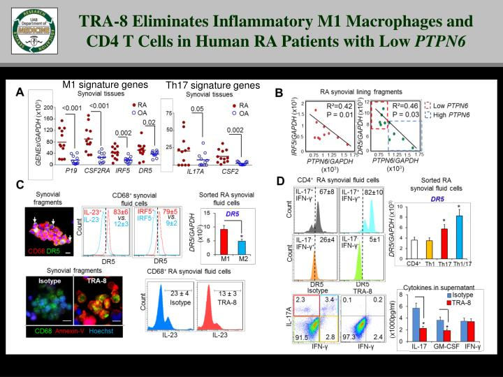 TRA-8 Eliminates Inflammatory M1 Macrophages and CD4 T Cells in Human RA Patients with Low