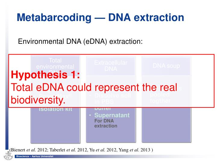 Metabarcoding — DNA extraction