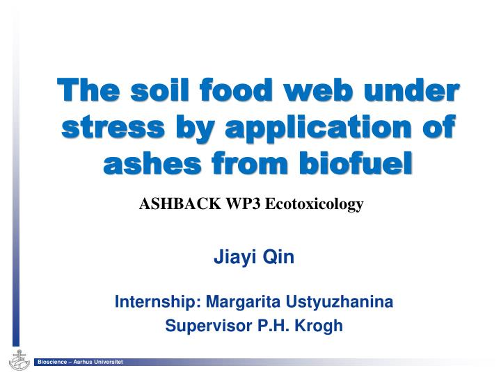 The soil food web under stress by application of ashes from biofuel