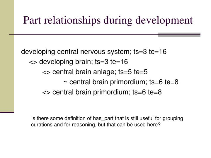 Part relationships during development