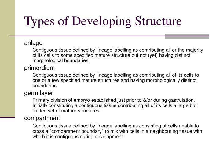 Types of Developing Structure