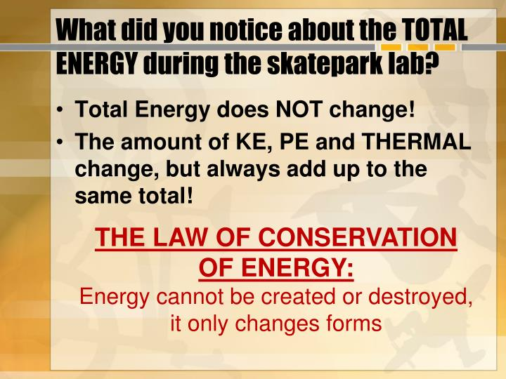 What did you notice about the total energy during the skatepark lab