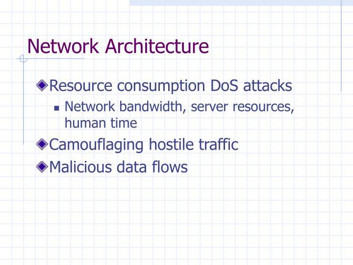Network Architecture