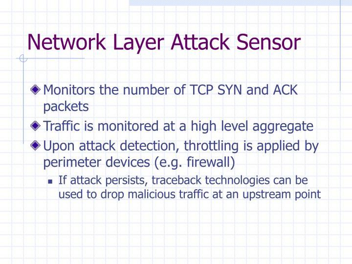 Network Layer Attack Sensor