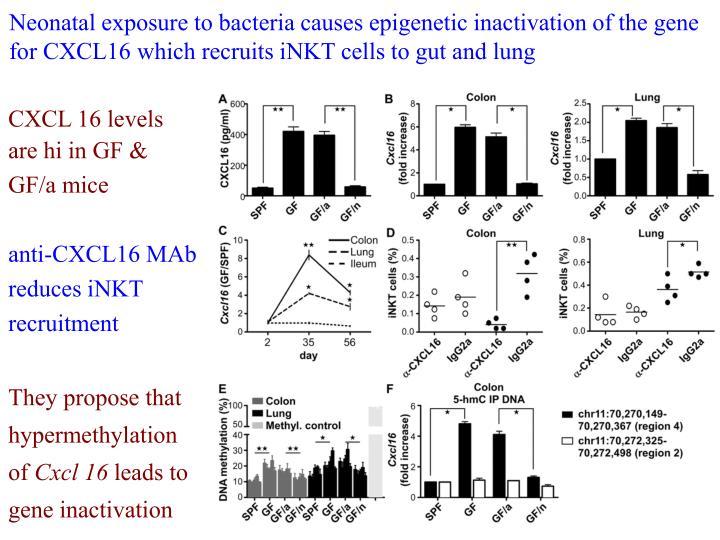 Neonatal exposure to bacteria causes epigenetic inactivation of the gene