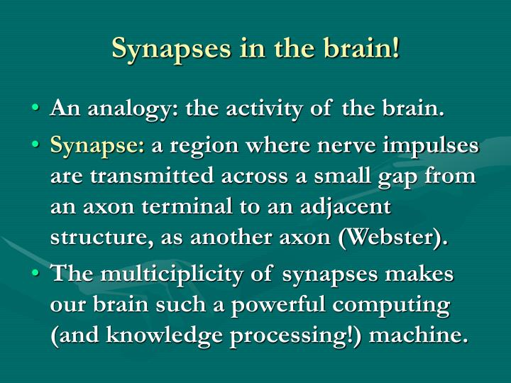 Synapses in the brain!