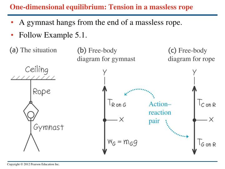 One-dimensional equilibrium: Tension in a massless rope