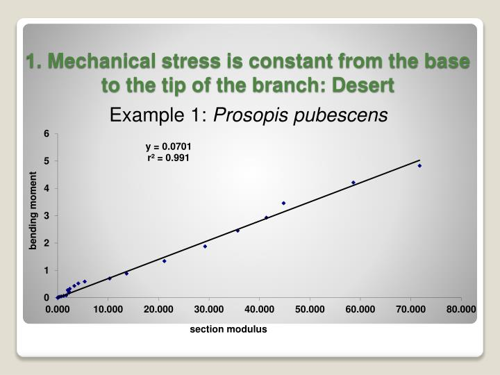 1. Mechanical stress is constant from the base to the tip of the branch: Desert