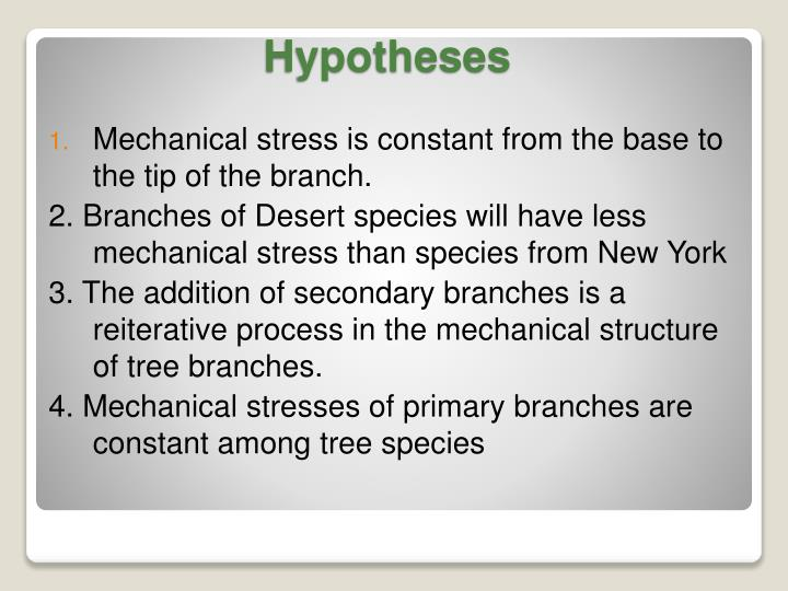 Mechanical stress is constant from the base to the tip of the branch.