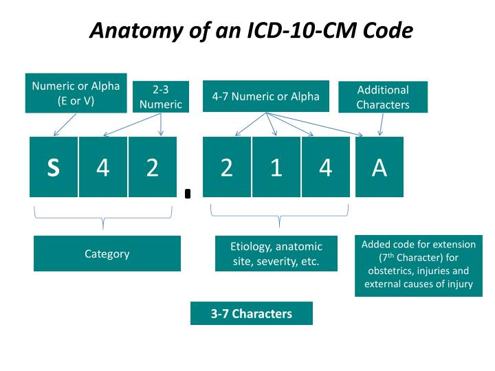 Anatomy of an ICD-10-CM