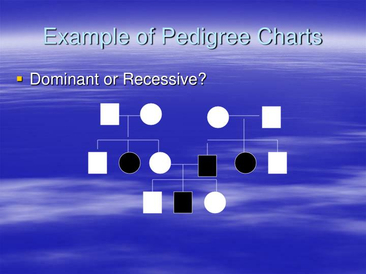 Example of Pedigree Charts