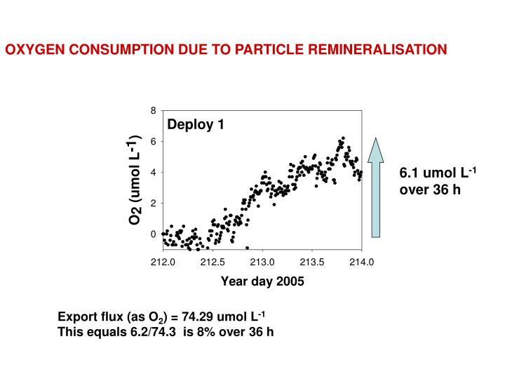 OXYGEN CONSUMPTION DUE TO PARTICLE REMINERALISATION