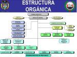 estructura org nica