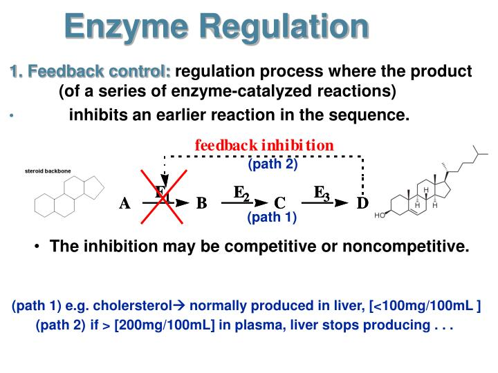enzyme controlled reaction essay The third reaction will analyze the enzyme activity rate through the decomposition   3) take filter paper and place to it at the bottom of the 25ml h202 solution   original controlled 3% of h202 solution (25ml), 1:5 dilution of 3% h202 solution .