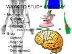 ways to study anatomy