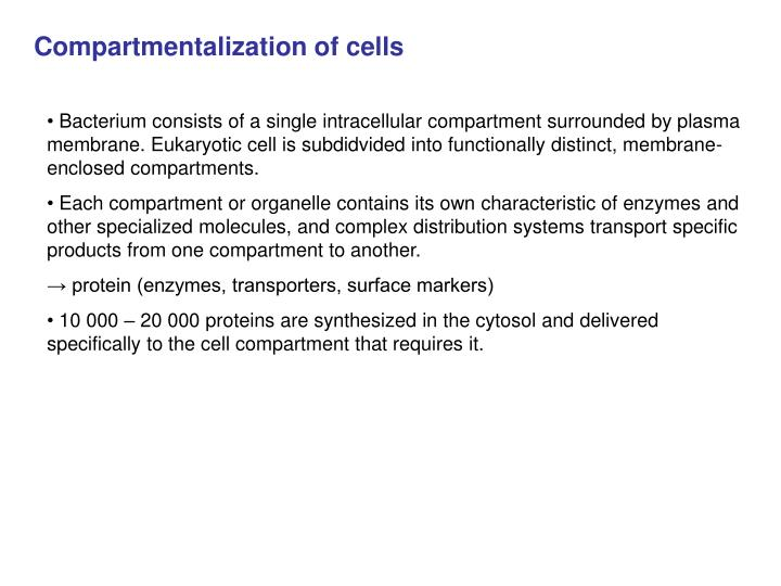 Compartmentalization of cells