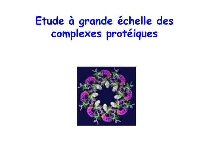 Etude à grande échelle des complexes protéiques
