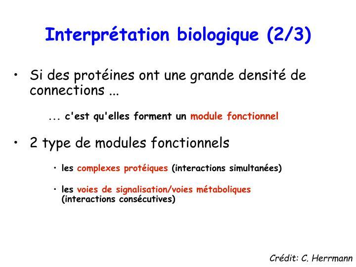 Interprétation biologique (2/3)