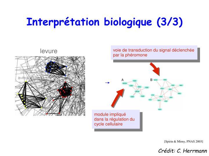 Interprétation biologique (3/3)