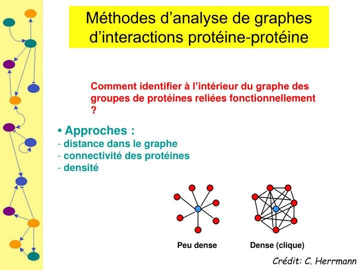 Méthodes d'analyse de graphes d'interactions protéine-protéine