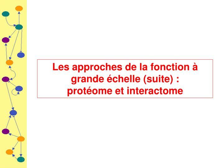 Les approches de la fonction à grande échelle (suite) :