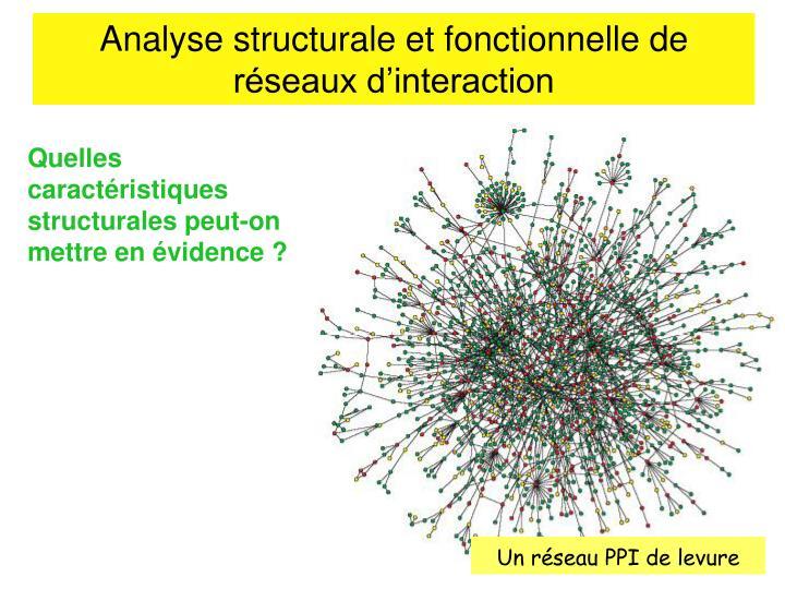 Analyse structurale et fonctionnelle de réseaux d'interaction