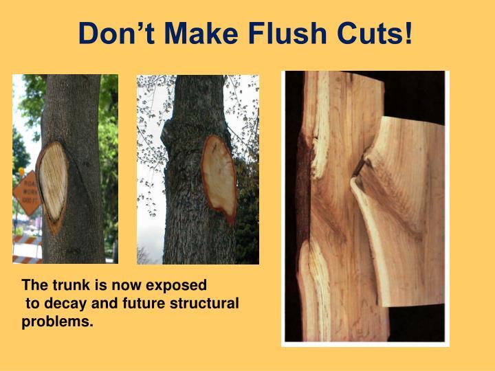 Don't Make Flush Cuts!