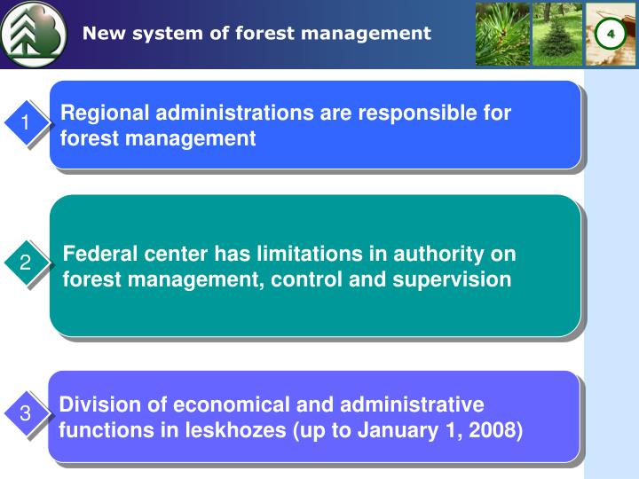 New system of forest management