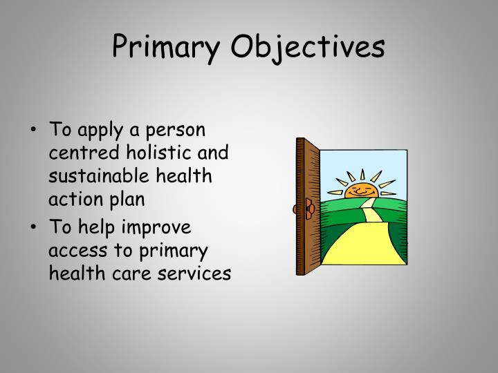 Primary Objectives