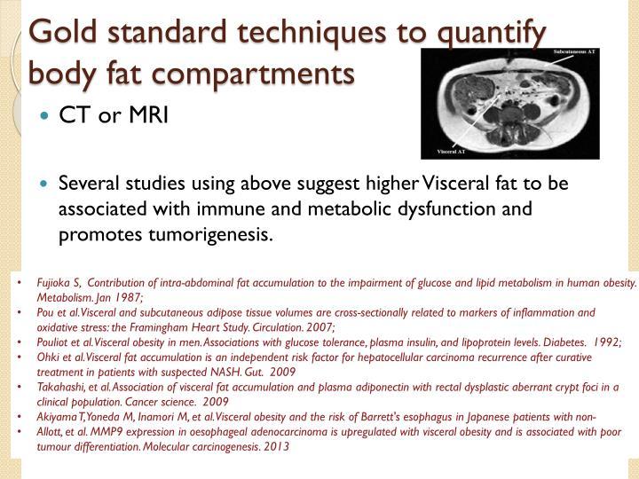 Gold standard techniques to quantify body fat compartments