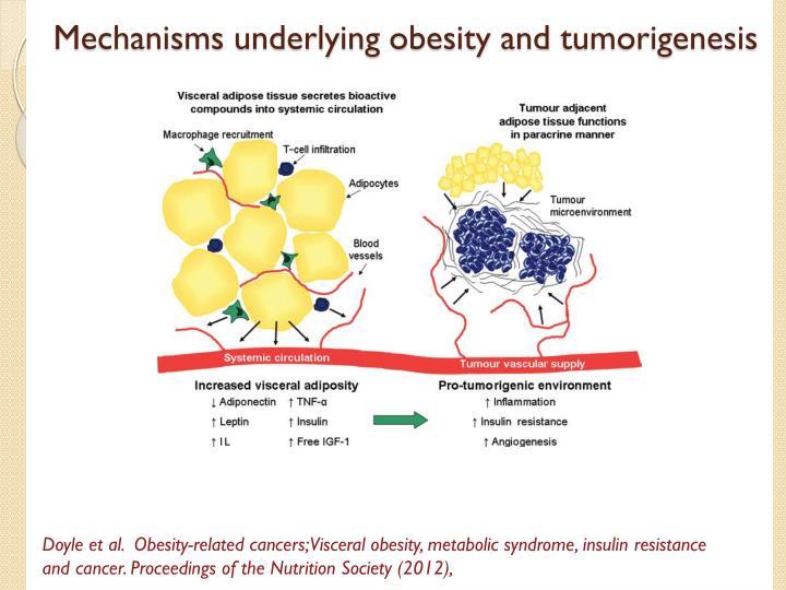Mechanisms underlying obesity and