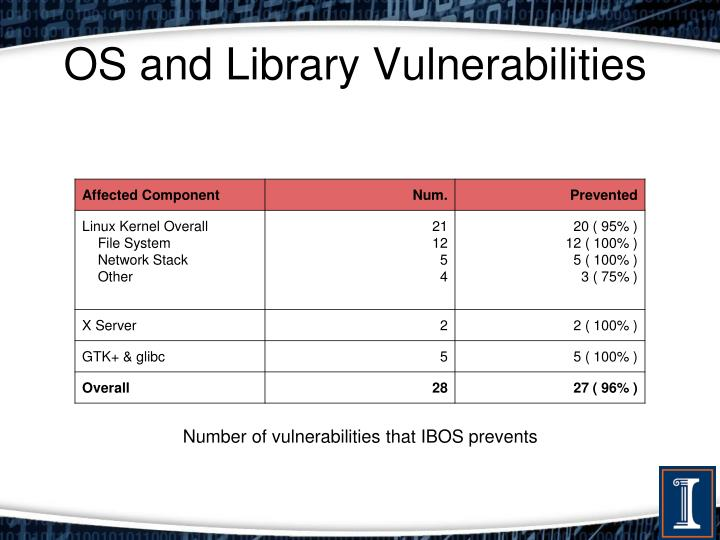 OS and Library Vulnerabilities