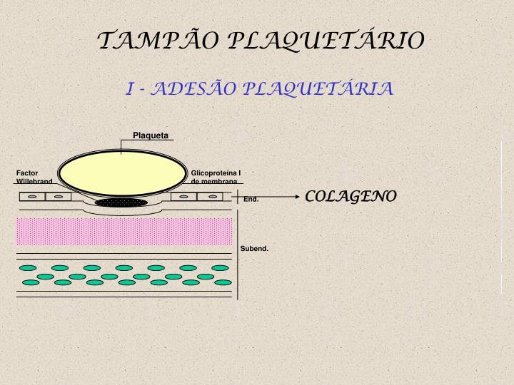 Plaqueta