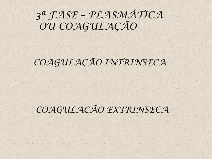 3ª FASE – PLASMÁTICA