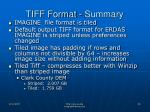 tiff format summary