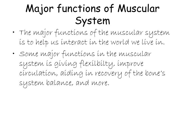 Ppt Muscular System Powerpoint Presentation Id6319125