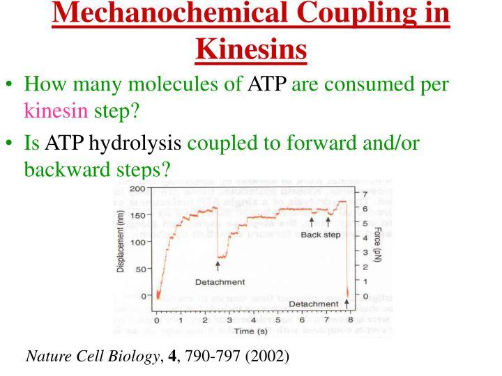 Mechanochemical Coupling in Kinesins