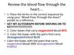 review the blood flow through the heart