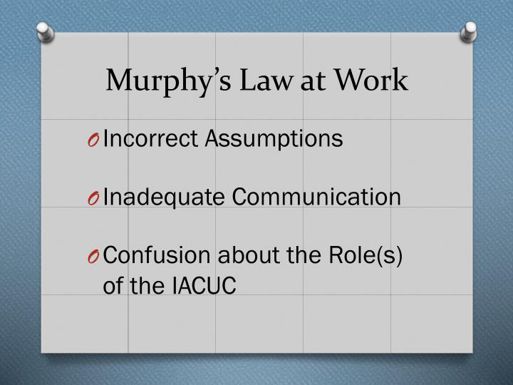 Murphy's Law at Work